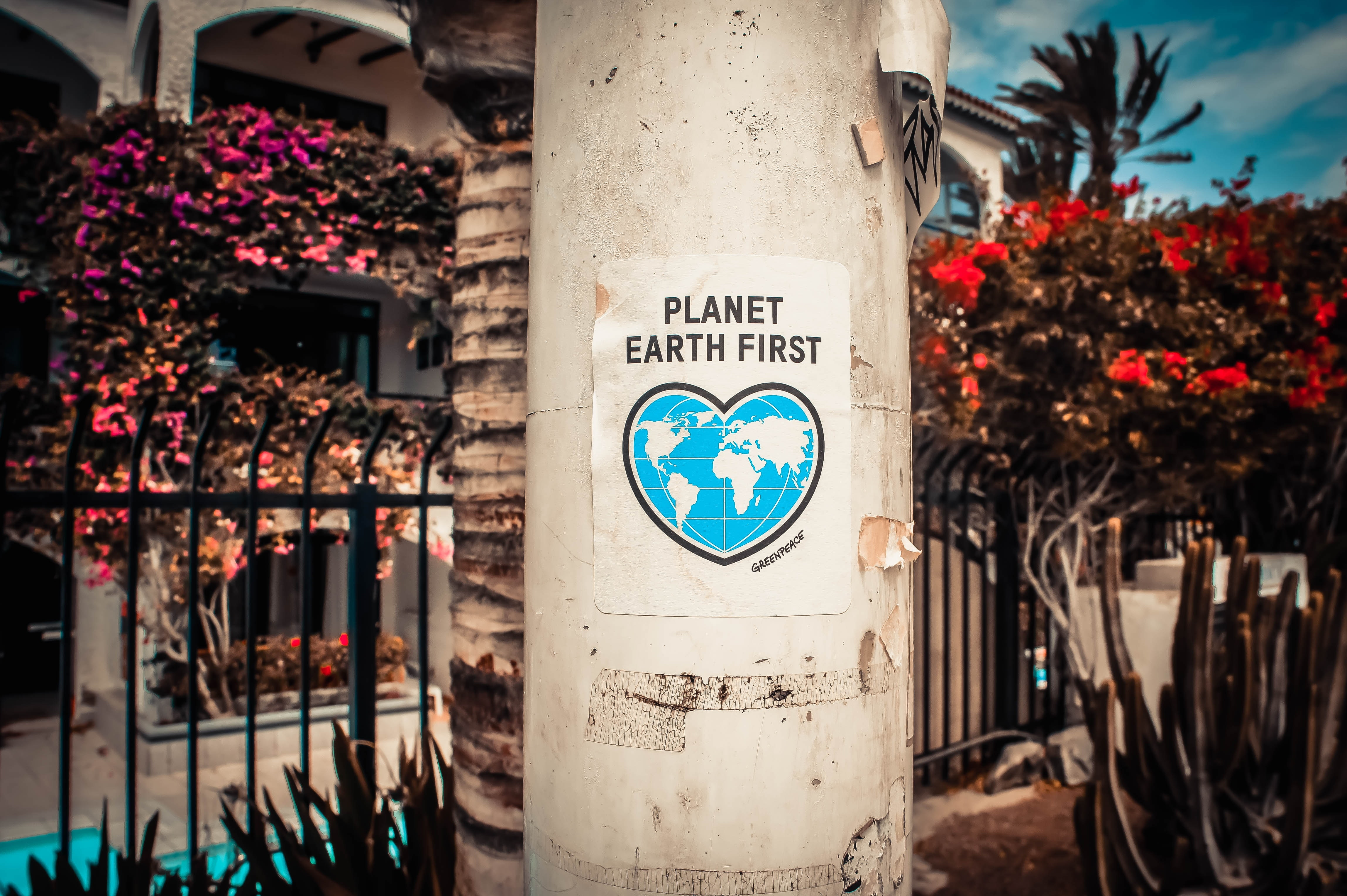 image with poster saying Planet Earth First
